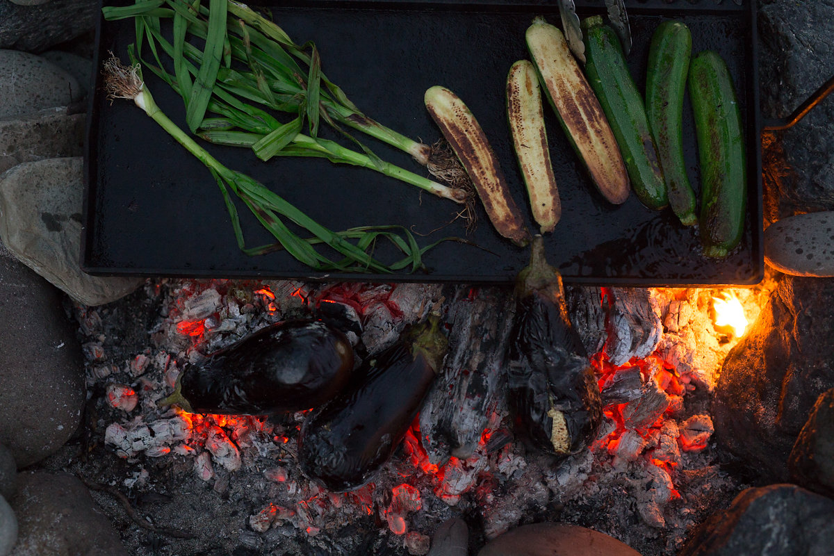 Wild Delicious Gallery image cooking foraged lunch over coals fire