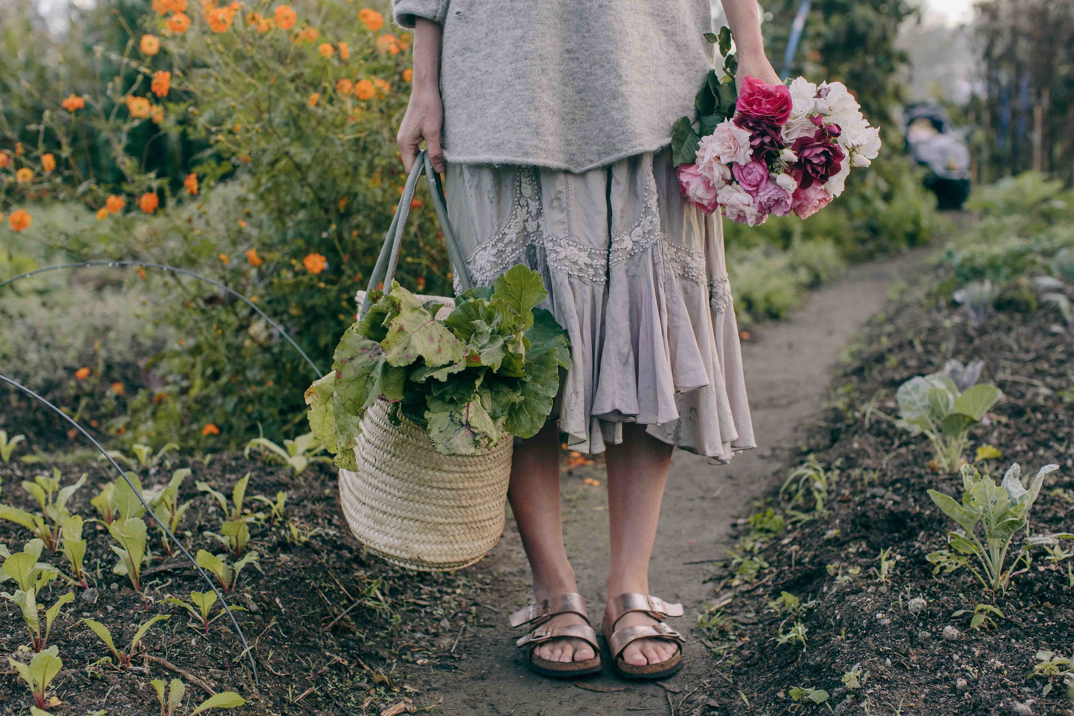 Wild delicious Gallery image Amber on garden path wit hforaged basked and flowers