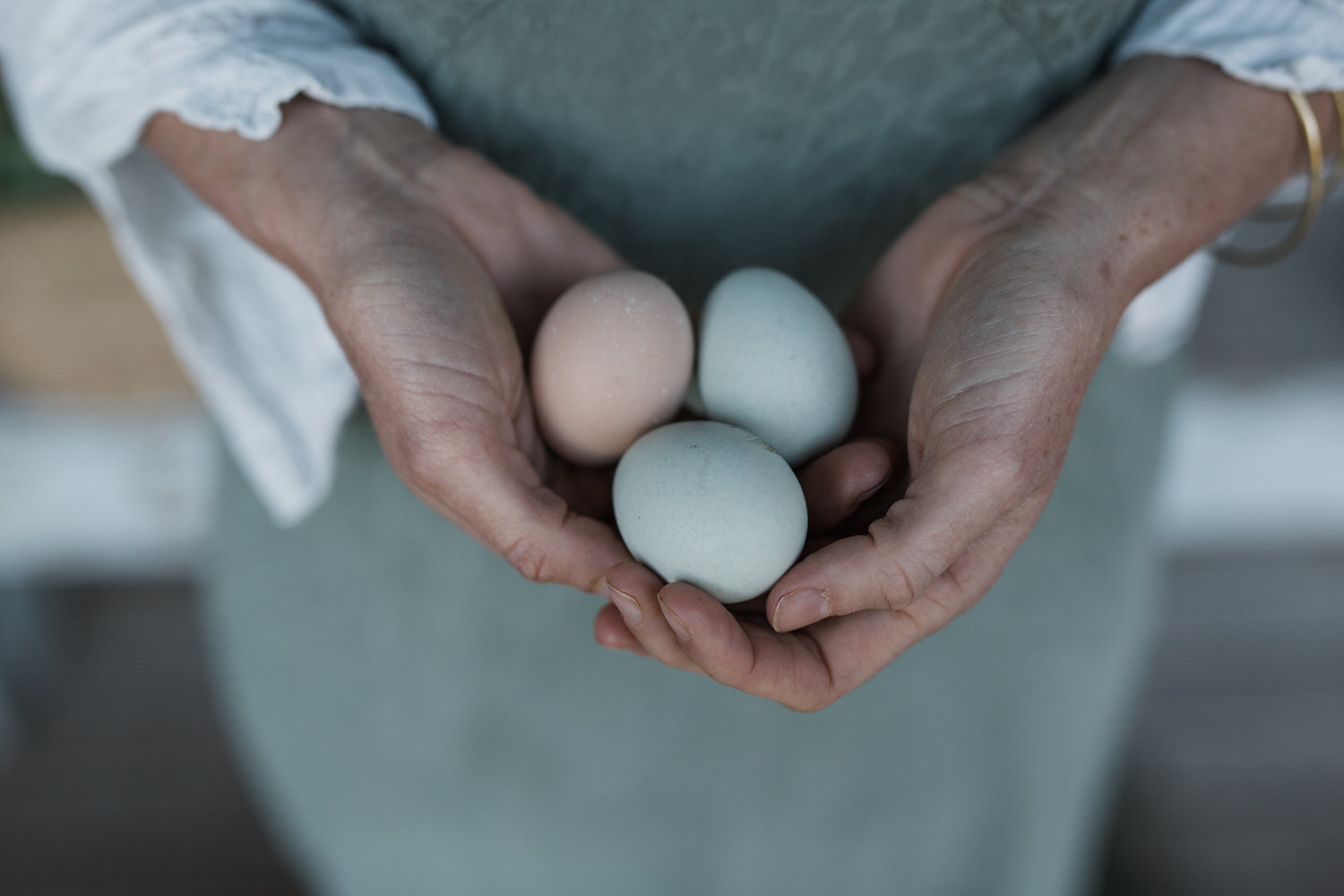 Wild Delicious Gallery image hands holding eggs